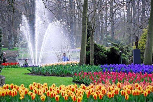 Романтичная и невероятная прогулка по парку